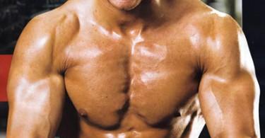 عضلة الصدر