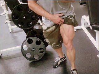 عضلات الارجل