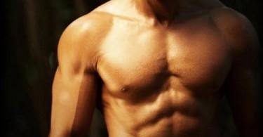 عضلات الصدر الداخلية