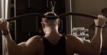 عضلات الظهر
